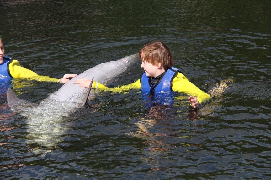 Die Delfine vertrauen Caro, wie Caro den Ärzten - am Ende wird alles gut! Danke!