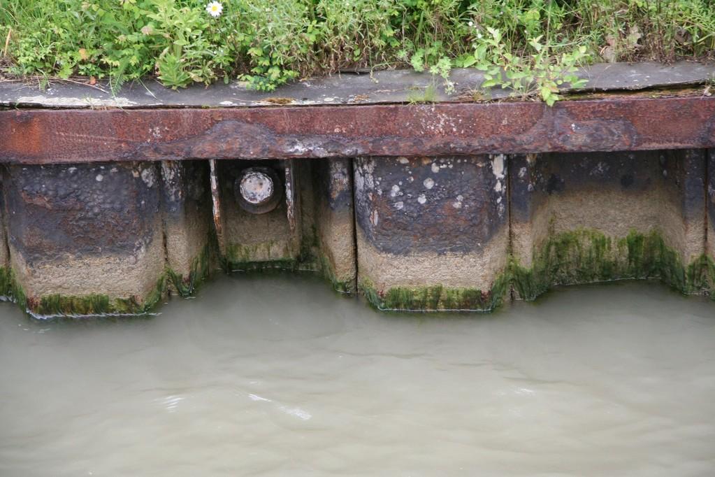 Elbeseitenkanal, reuna