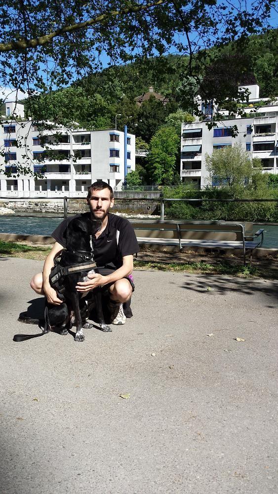 Mischling im Hundekurs
