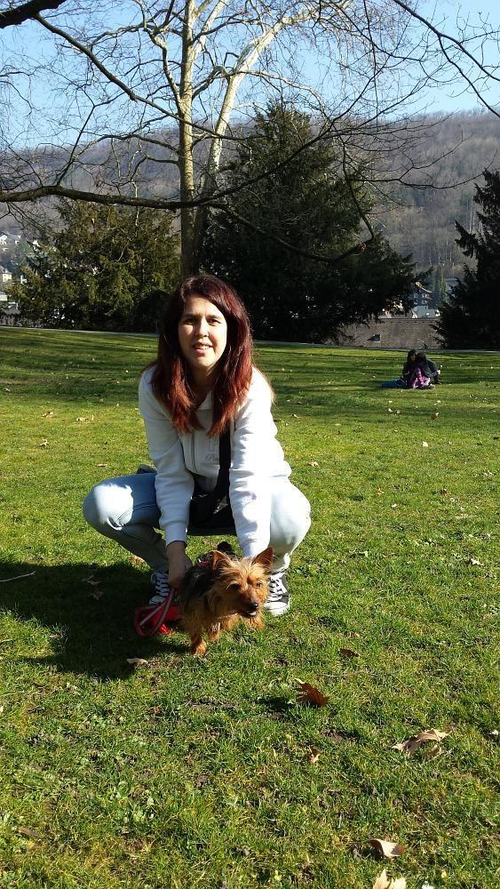 Hundetraining Kurpark