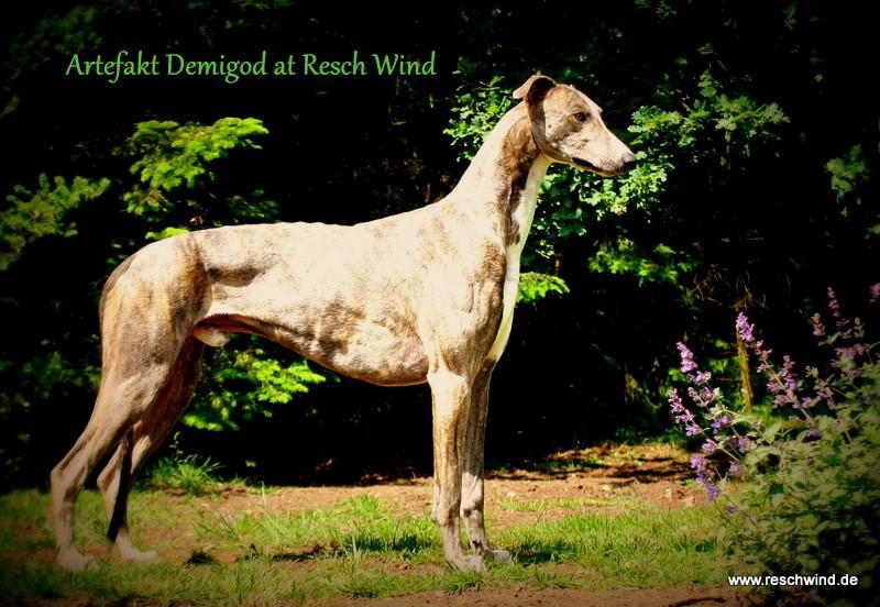 Artefakt Demigod at Resch Wind 18m