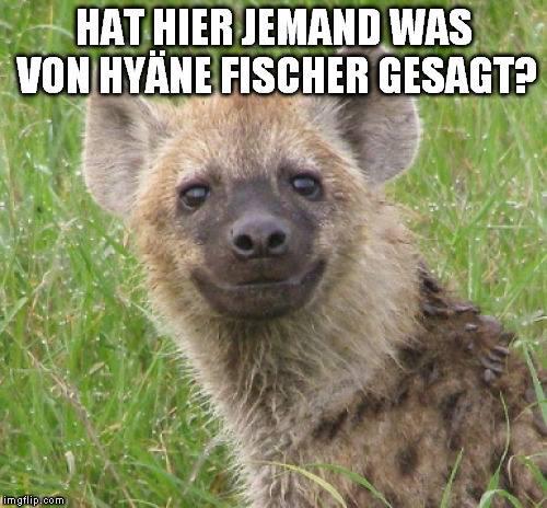 Hyäne Fischer