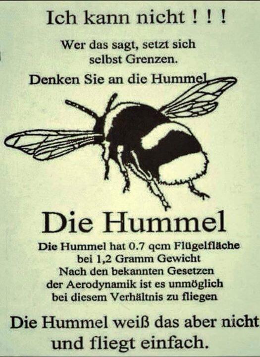 Die Hummel