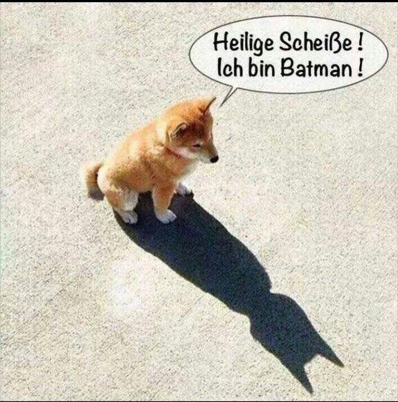 Ich bin Batman...