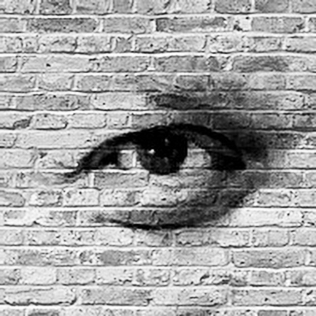Versteinerter Blick