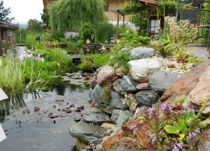 Steingarten Teich Und Wasserschildkroten 1539261615s Webseite