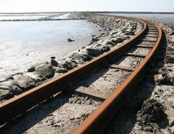 Togskinnerne til Nordstrandmose