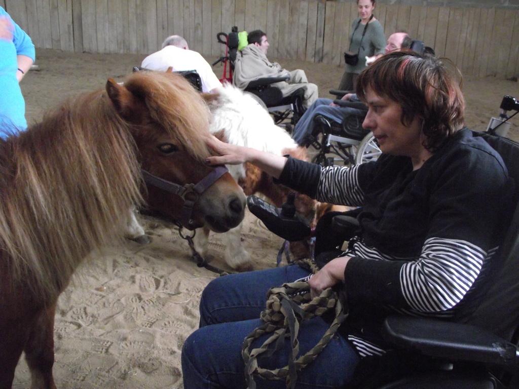 Face à face avec le cheval