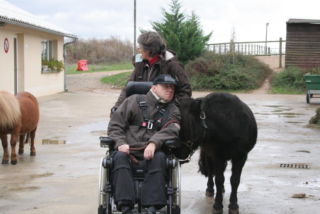 Mon poney et moi, on se regarde dans les yeux...