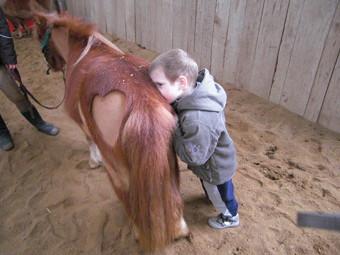L'enfant entre en contact avec son poney : les résultats de l'équithérapie sont l'objet d'études scientifiques.