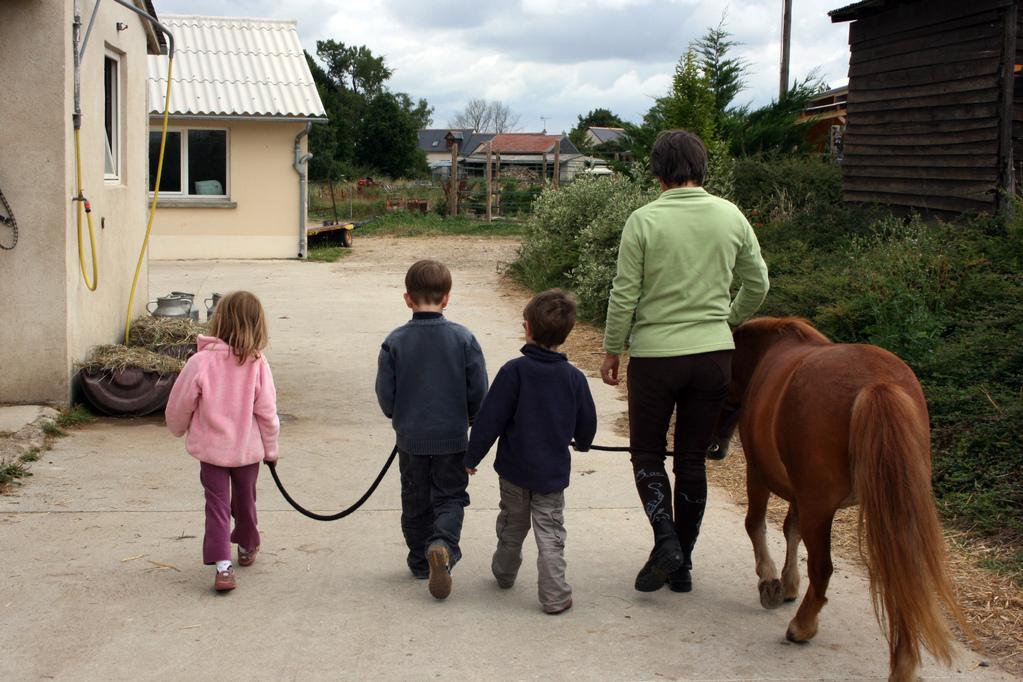 Un poney bien accompagné!