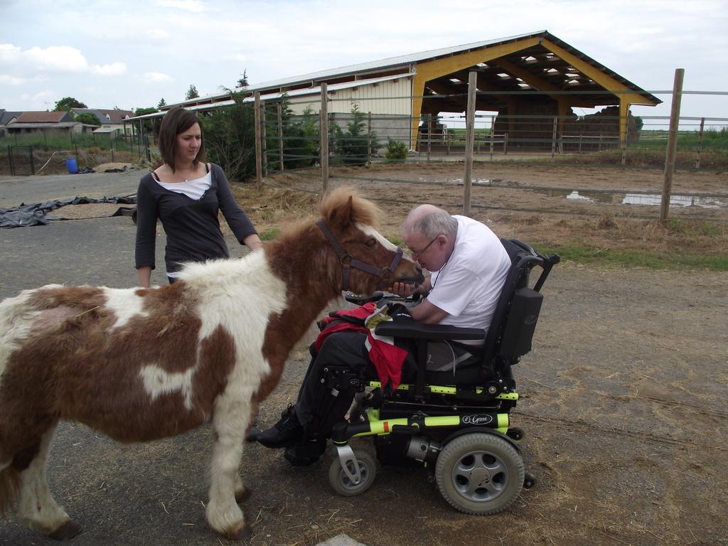 Tendre échange avec le cheval