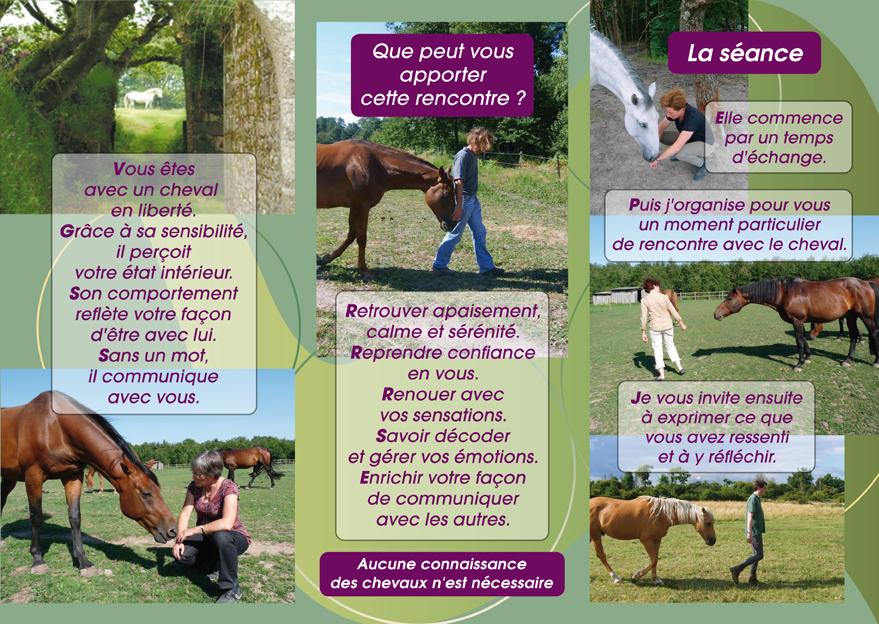La plaquette psychothérapie avec le cheval-verso de Cheval et Sens