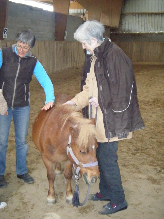 Thérapie senior : il est doux mon poney!