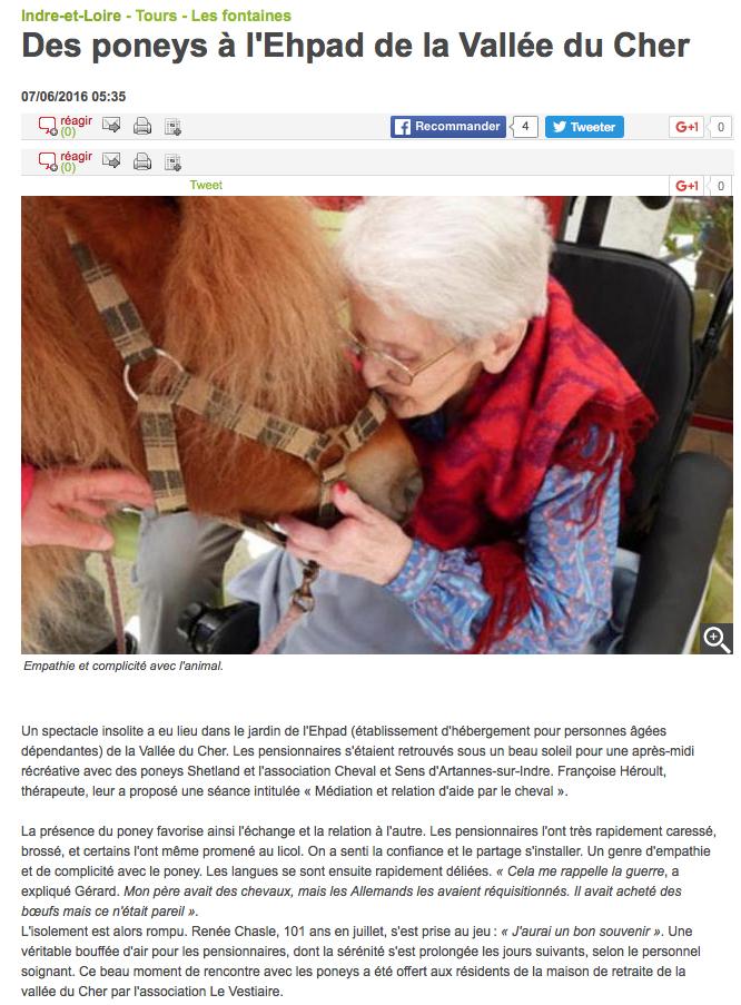 Cheval et Sens : médiation  et relation d'aide par le poney à la maison de retraite.