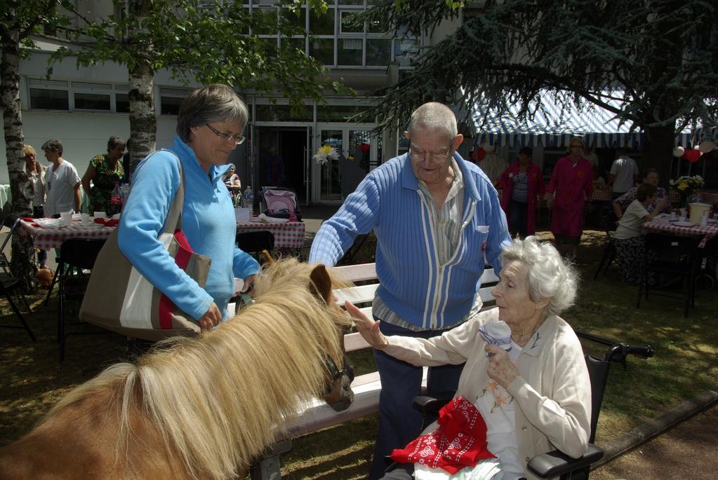 Thérapie senior : quel plaisir de caresser un poney!