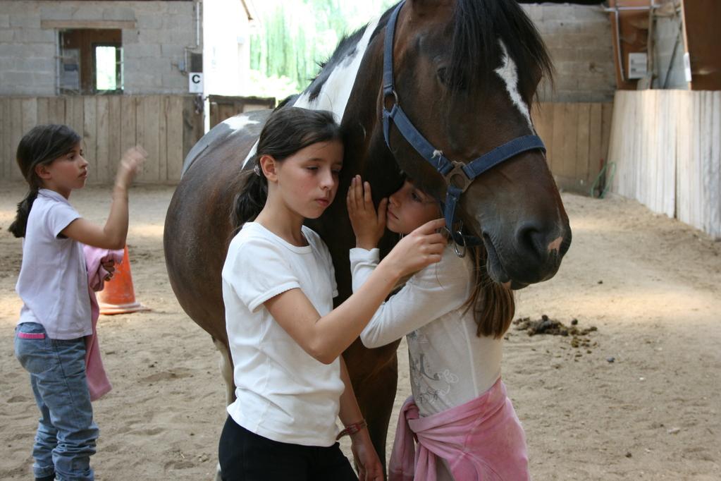 Un câlin avec le cheval