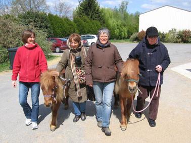 Thérapie senior : nous conduisons les poneys au manège