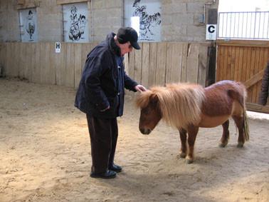 Thérapie senior : je suis avec mon poney