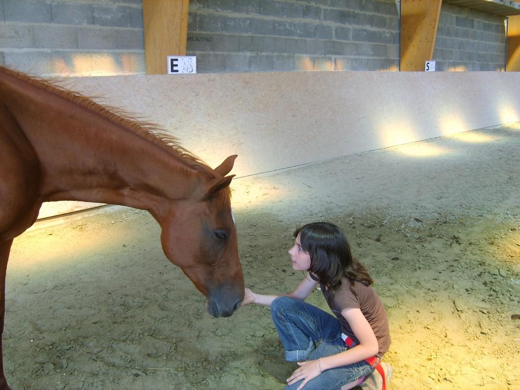 La complicité enfant-cheval