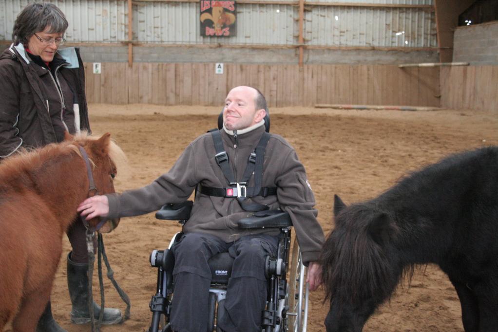 Chic, deux poneys pour moi tout seul...