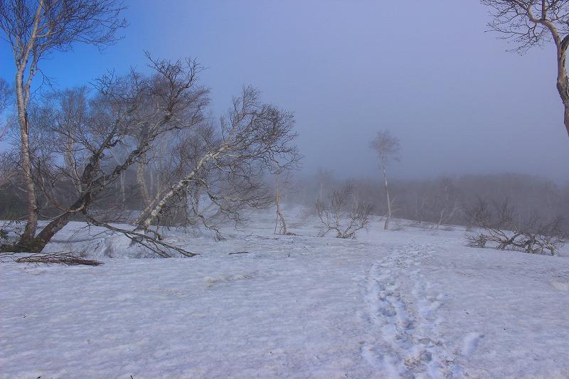 札幌岳冷水コース登山道山頂付近
