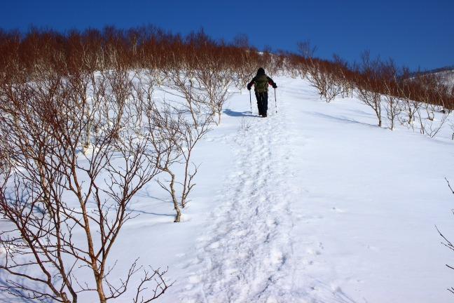 室蘭岳西尾根コース