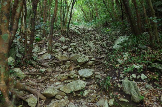 嘉津宇岳登山道