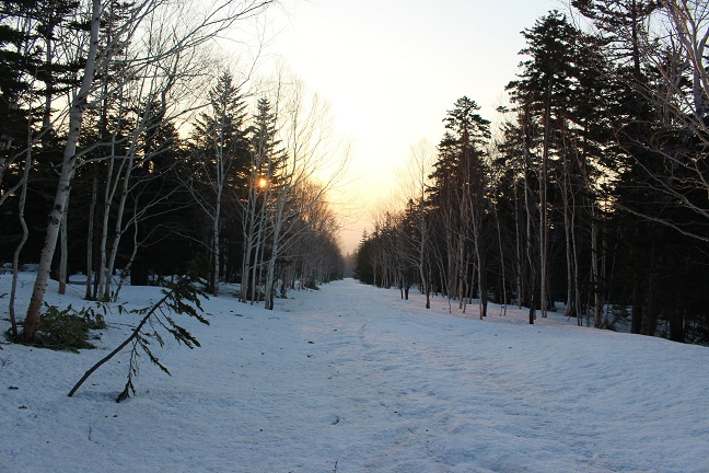 `林道で迎える夜明け
