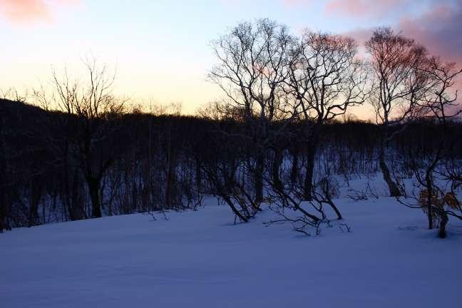 雪原に夜が明ける