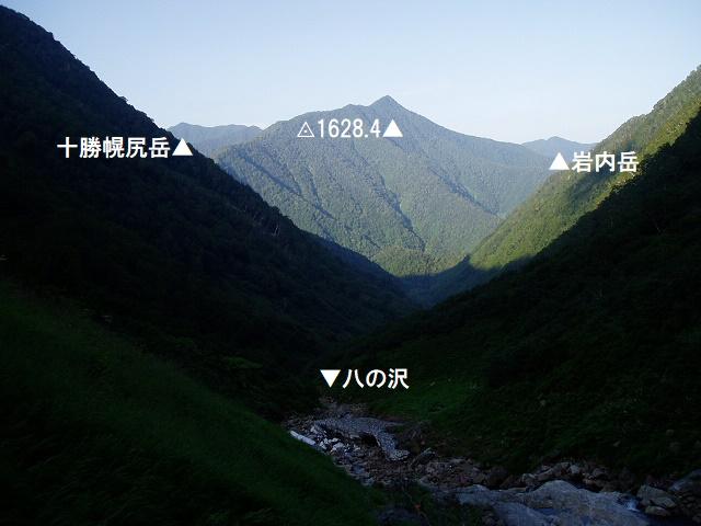 1629峰