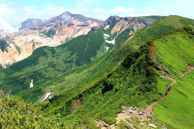 富良野岳|初夏のお花畑を楽しむ山旅(7月中旬)