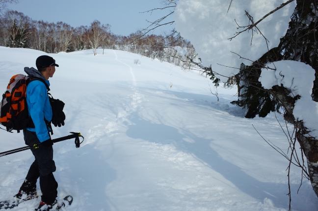 峰越へ続く稜線
