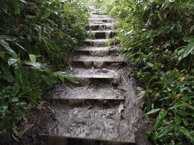 藻岩山登山道