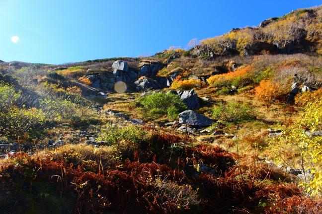 木曽駒ヶ岳福島Bコースの紅葉