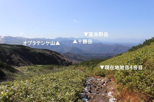 大雪山系旭岳4合目