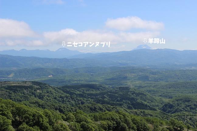 黒松内岳の登山道から見たニセコアンヌプリと羊蹄山