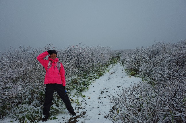 栗駒山に紅葉を楽しみにやって来たけれど、やっぱり雪だった件