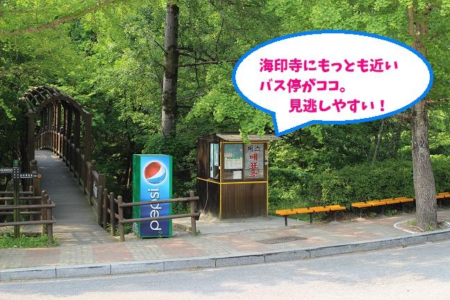 韓国海印寺バス停