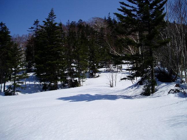 徳舜瞥山への登山道