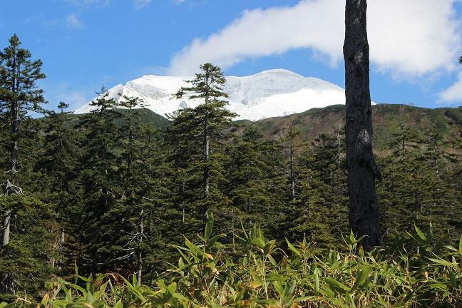 大雪山系旭岳初冠雪