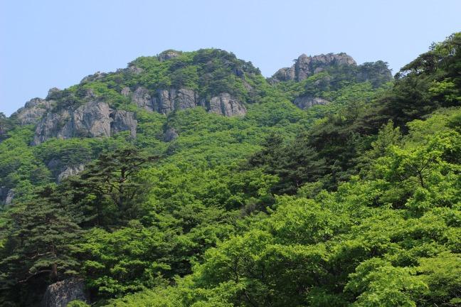 伽倻山上部