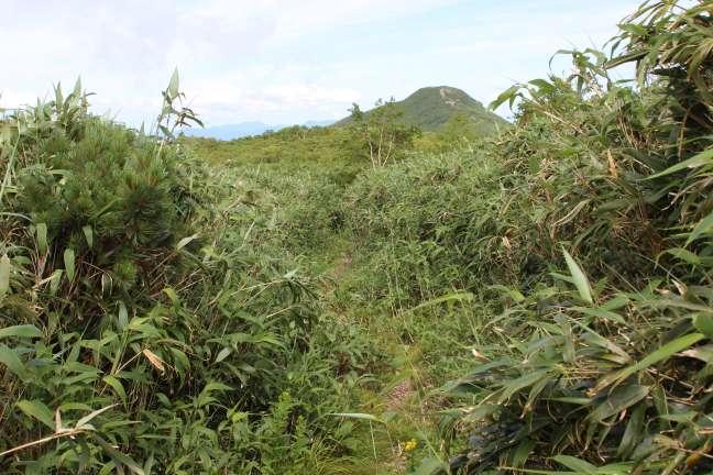 岩内岳から幌別岳への縦走路