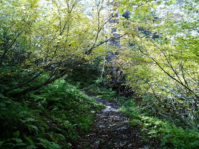 天人峡から第一公園へ