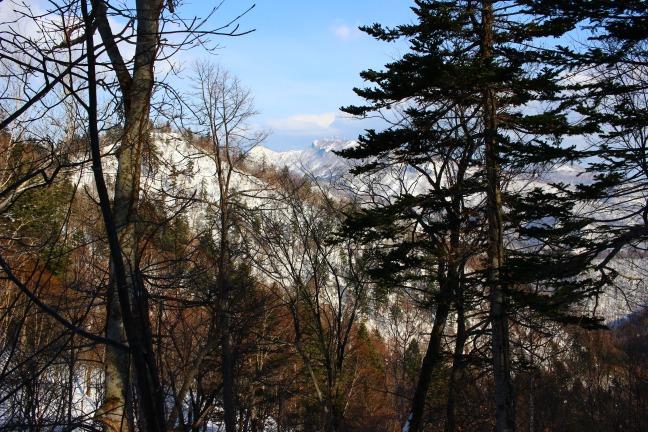 百松沢登山道から見た手稲山