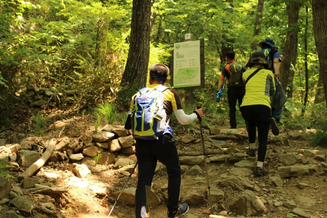 日曜日の伽倻山登山道