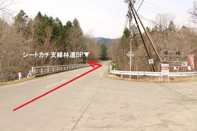 曙橋 シートカチ支線林道