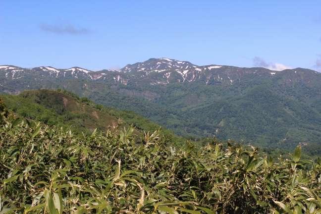黒松内岳から見た大平山