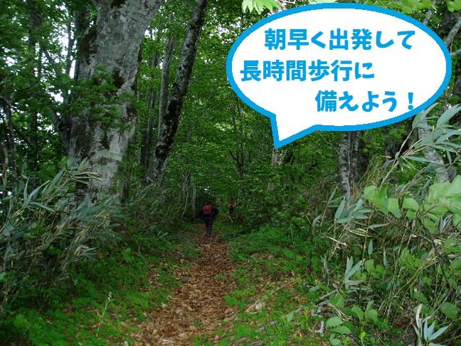 遊楽部岳登山道