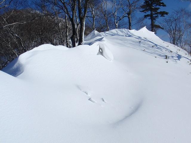 ピセナイ山